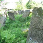 Ukrajina, hřbitovy a všudypřítomné borůvky