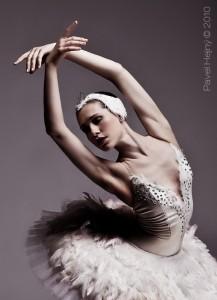 Bílá labuť (Autor: Pavel Hejný)