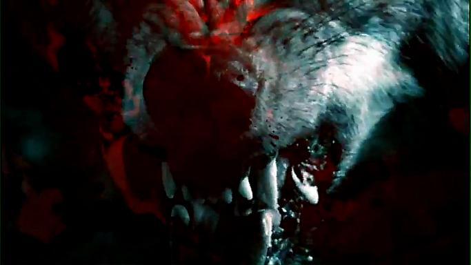 Vlci prožívají existenciální tíseň (foto z knižního traileru)