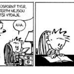 Calvinů není nikdy dost
