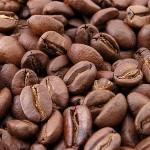 V opojení kofeinu