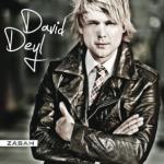 David Deyl – Zásah