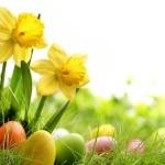 Velikonoce veselé a světové