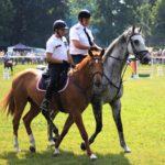 Na jubilejním XX. mezinárodním setkání jízdních policií vítězili ostravští jezdci