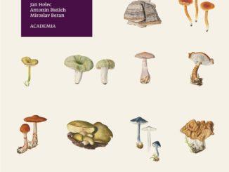 obálka knihy, zdroj: www.academia.cz