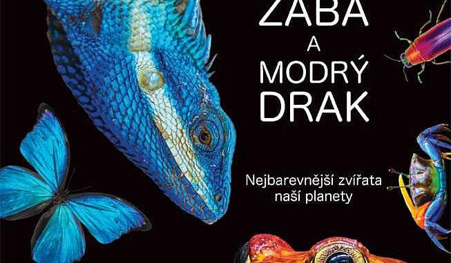 rajcatova zaba a modry drak